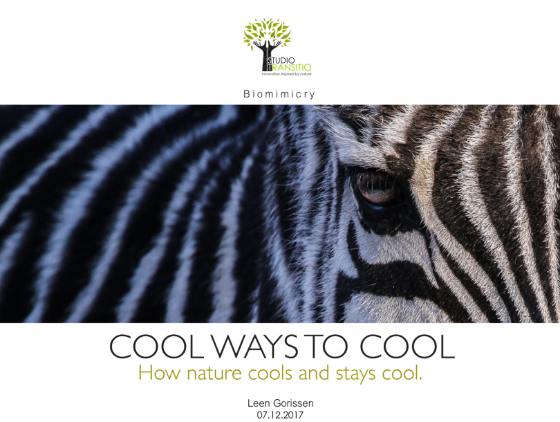 Forbes Top Multinational Performer – Innovating cooling with inspiration from nature